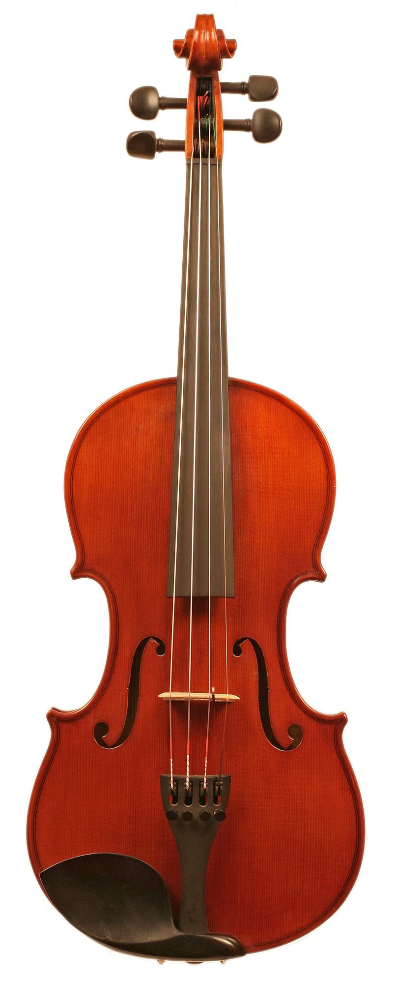 Violin 12