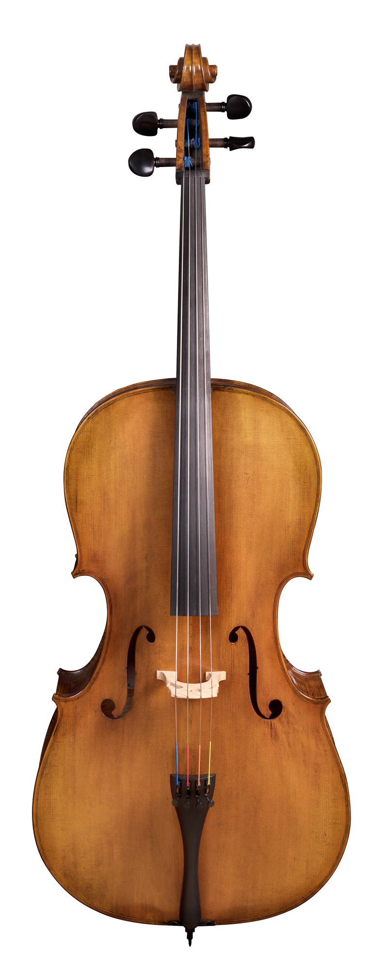 Vivaldi 100 series cello
