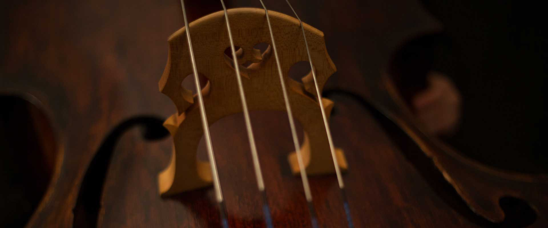 5 important tips for looking after your instrument